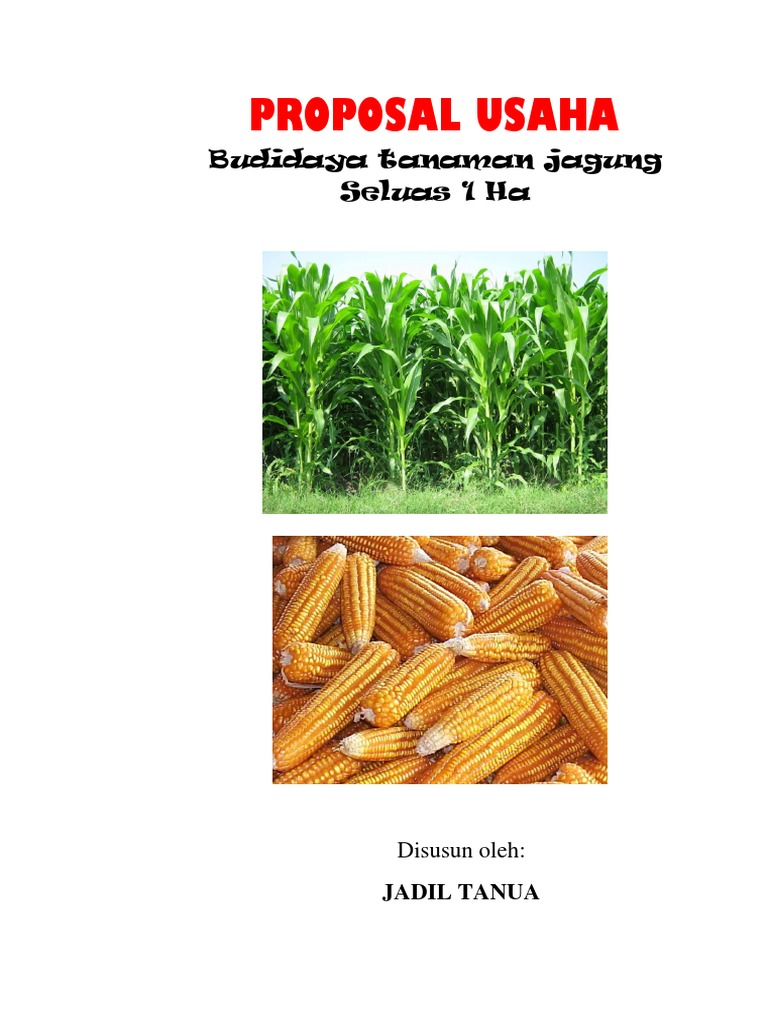 Proposal Budidaya Tanaman Jagung Docx