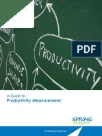 Guidebook Productivity Measurement