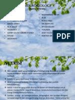 PPT Nutrisi Mikroba