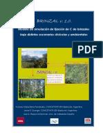 ModeloBrinzal-versinfinal.pdf
