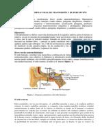cap._1_libro_2.pdf