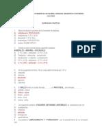 Ejercicios Del Proceso Formativo de Las Palabras