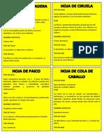 TIPO DE HOJA.docx