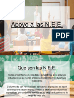 Apoyo a Las Nee-consejo de Profesores.