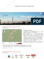 Práctica operaciones de planta, Caracara.pptx