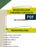 3 El Cerebro Hemisferios1