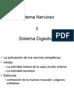 sistema nervioso en el sistema digestivo