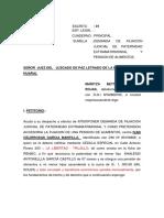 Filiacion Extra. Castillo Rojas Maritza