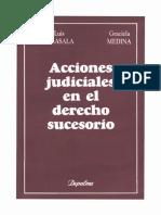 ACCIONES JUDICIALES EN EL DERECHO SUCESORIO - JOSE LUIS PEREZ LASALA Y GRACIELA MEDINA.pdf