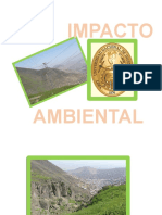 Impacto Ambiental Ntrabajo Final