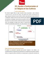 197-El-Potasio-Ayuda-a-Contrarrestar-el-Estres.pdf