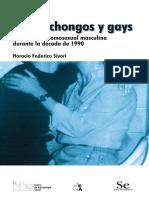 Locas Chongos y Gays