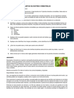Plantas Silvestres Comestibles-2