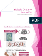 embriologia ocular
