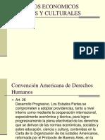 Derechos Economicos Sociales y Culturales (DDHH)
