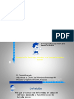resumen pie plano-1.pdf