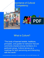 importance of cultural competency  1