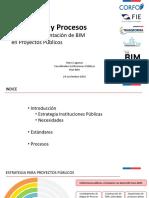 Documento Roles Bim Nov2017