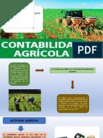 Contabilidad Agricola AGROPECUARIA