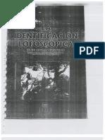 identificacion lafoscopica