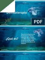 Delfinoterapia y Equinoterapia