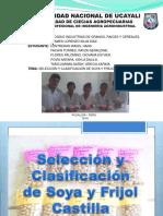 Selección y Clasificación de Soya y Frijol Castilla