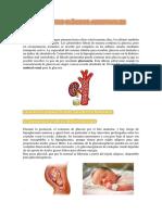 ASPECTOS CLÍNICOS ADICIONALES expo bioqui word.docx