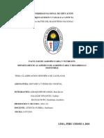 monografia de botanica de clasificacion.docx