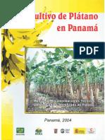 cultivoplatano1