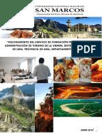 Mejoramiento de Formacion Profesional UNMMSM 306660 (1)