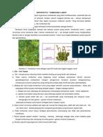 bryophyta1 (1).pdf