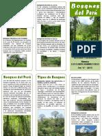 Triptico Bosques Del Peru