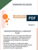 169720047-Liberacion-Flash.pdf