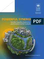 f_PowerfulSynergies2013_Web.pdf