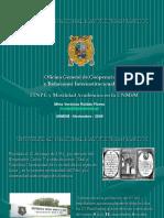 6.FINPEyMovilidadAcademicaenlaUNMSM