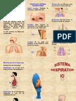 triptico sist. respiratorio.docx