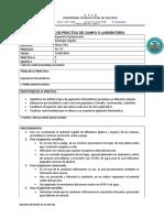 Informe Pigmentos Fotosinteticos