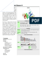 Cyclin-Dependent Kinase 6