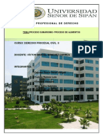 255780523-Proceso-Sumarisimo.docx