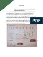 01.-Scurt-istoric.-Gametogeneza.-Ovulatie.-Fecundatie.-Nidatie.-Placentatia.pdf