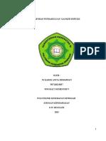 309183783-Lp-CA-Serviks.doc