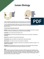 Human-Biology-EDEXCEL-IGCSE.pdf