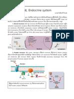 NLME endocrine.pdf