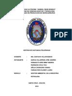 307366538-Informe-Sustancias-Peligrosas-v4.docx