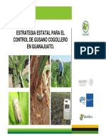 Control de Gusano Cogollero.pdf