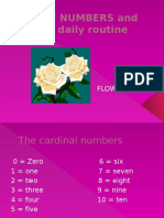 The NUMBERS and the Daily Routine - Copia