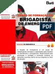 treinamentodebrigada2011-110621092448-phpapp01.ppt