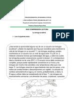 GUIAS DE REFORZAMIENTO (Autoguardado).docx