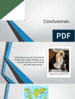 Conclusiones senxuales.pptx