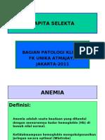 pbl anemia.pdf